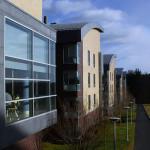 Collegiate Housing